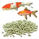 Корма для всех видов прудовых рыб